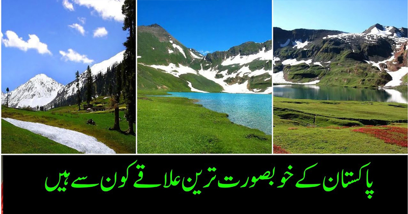 pakistan tour